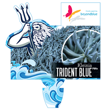 tridentblue-small